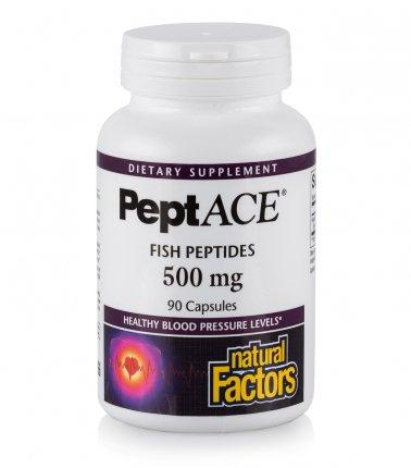 Anti-ACE Peptides